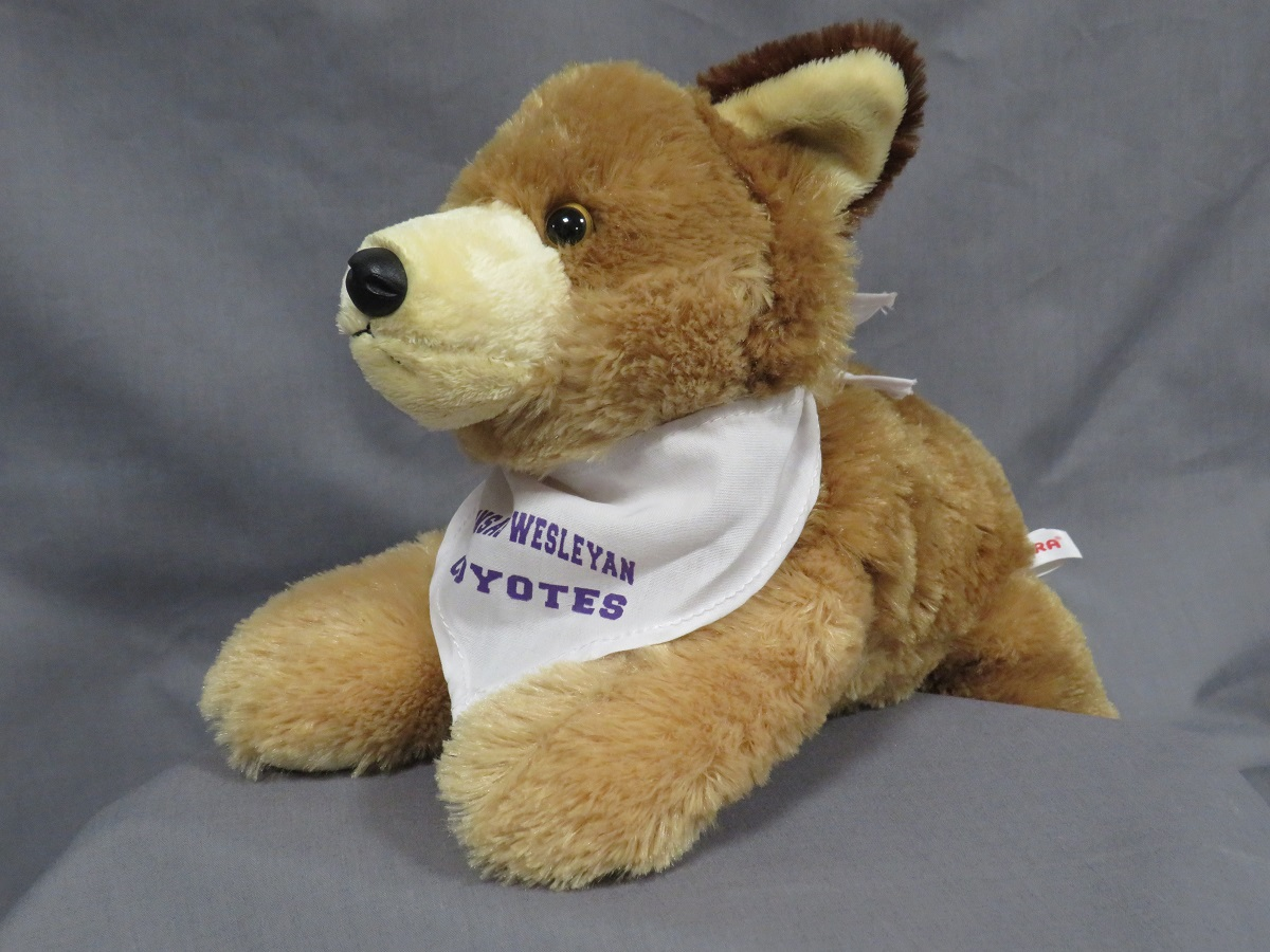 Coyote Stuffed Animal