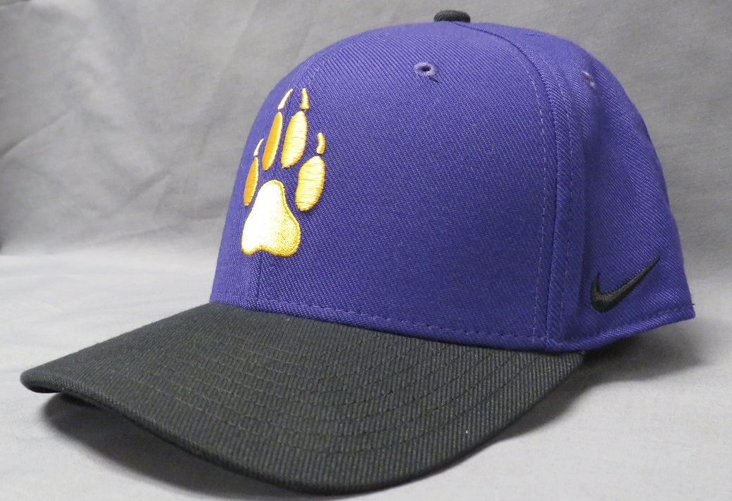 A Blue And Purple Hat