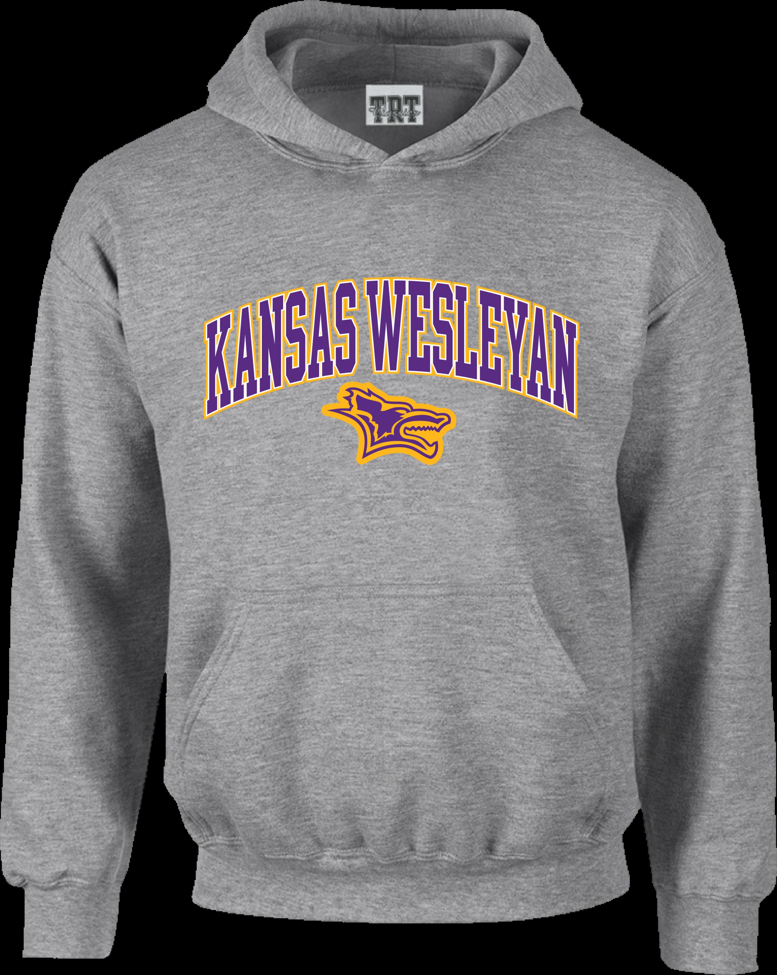 Kansas Wesleyan Light Grey Hood